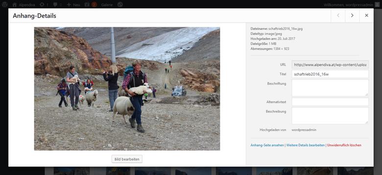Screenshot WordPress Mediathek Bild bearbeiten